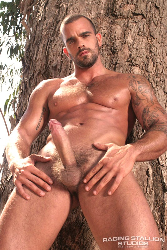 Damien Crosse gay sexe