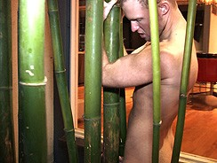Bamboo Will Do from Austin Zane