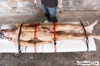 Strapping Luke from Boynapped