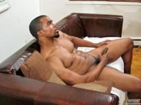 Boxer from Next Door Ebony