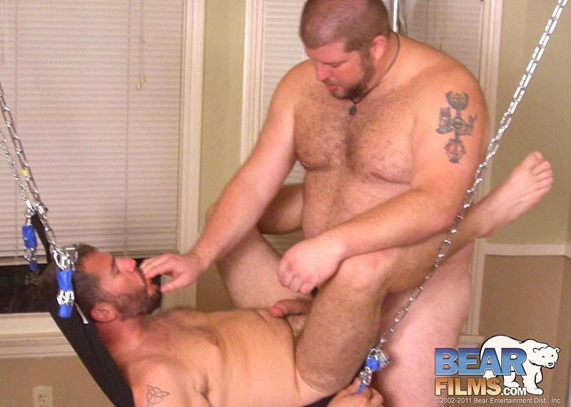 Gay Bear Cub Porr