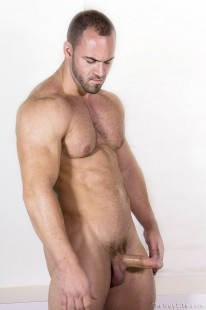 Distinctive Assets Rex from The Guy Site