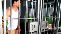 Cell Reception from Next Door Buddies