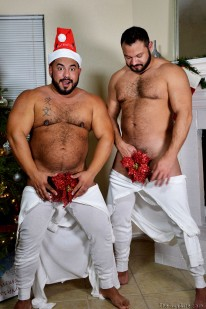 Winter Bears from The Guy Site