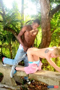 White Boy Cums Face To Face from Staxus