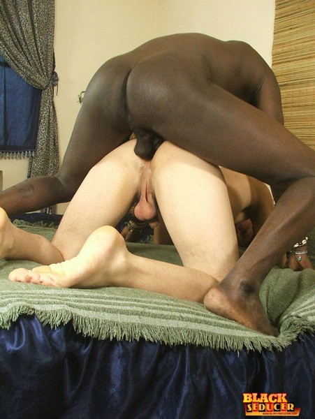 black cock for white twink