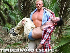 Timberwood Escape from Pride Studios