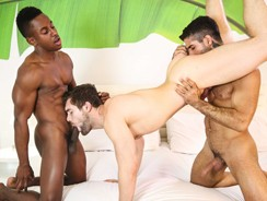 Thoroughbred Part 3 from Men.com