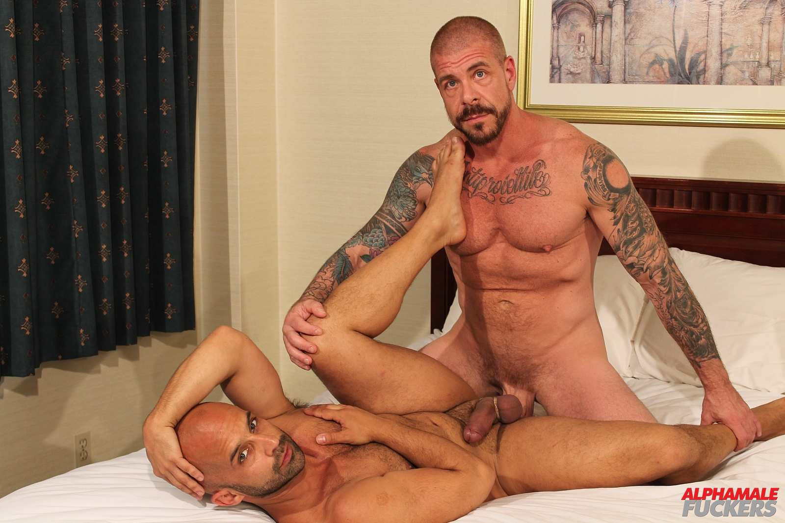 Rocco steele gay