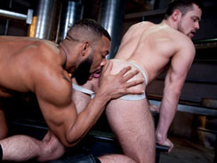 Raw Power 3 from Raging Stallion