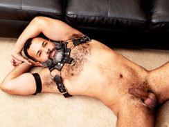 home - In Leather And Blue from Hairy And Raw