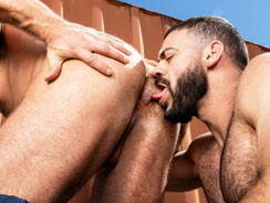 Haulin Ass 4 from Raging Stallion