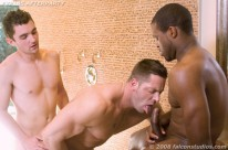 Afterparty from Falcon Studios