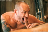 Greased from Falcon Studios