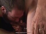 Big Hairy Bears Orgy