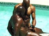 Amazing Black Muscle H