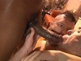 Two Newcummers and One