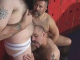 Hot Bear Sex