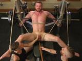 Ginger Muscle God Torm